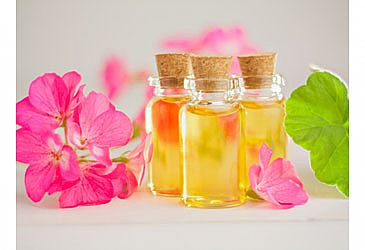 Geranium Oil - Get to Know the Geranium Plant's Virtues